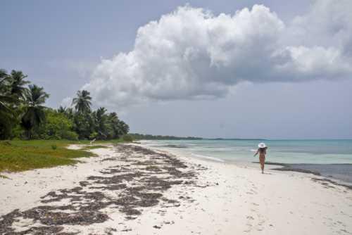 отдых в ливадии, крым что посмотреть в ливадия на отдыхе в крыму на море